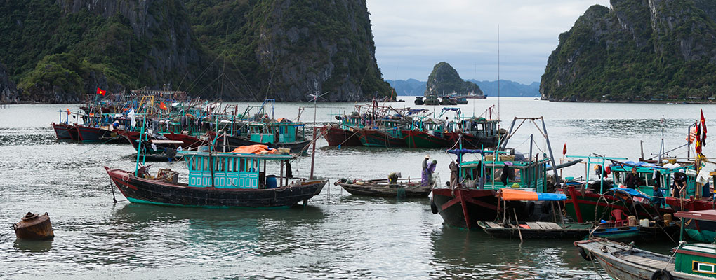 Business as usual: fishermen in Halong City, Vietnam. The country has relaxed its foreign investment rules to increase privatisation in the country