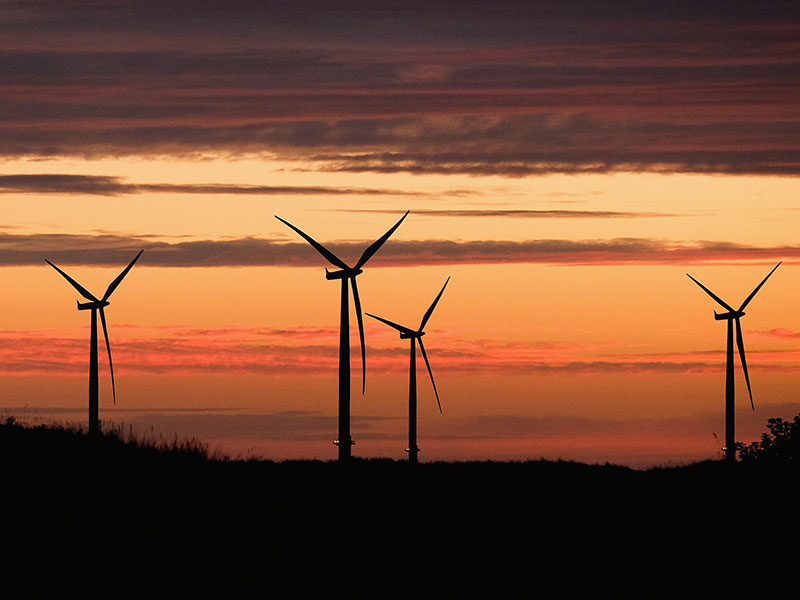 In a recent report, the World Energy Council has predicted solar and wind power will hold a share of between 20 and 39 percent of the global energy market by 2060