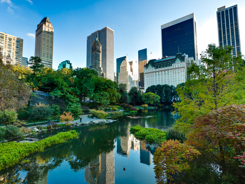 If Central Park, which is around 34 million square feet, were to be completely developed, there would be space for almost 62,000 studio apartments just at ground level