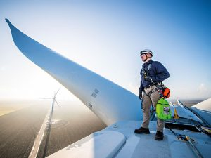 Iberdrola: collaboration is key to decarbonising the economy and solving the climate crisis