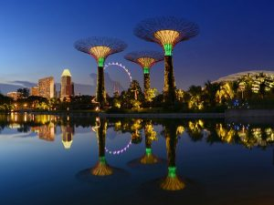 Dragonfly Lake, Singapore